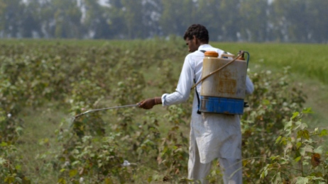 Farmer spraying his field with pesticides. Still image from The True Cost